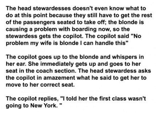 genius pilot
