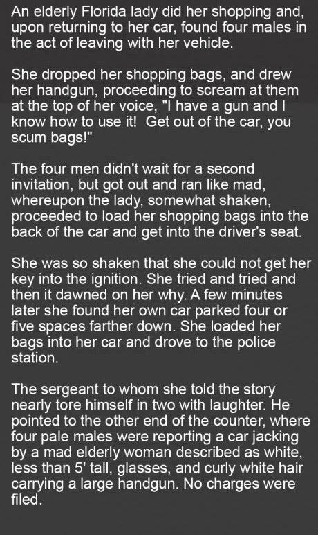grandma's car stolen