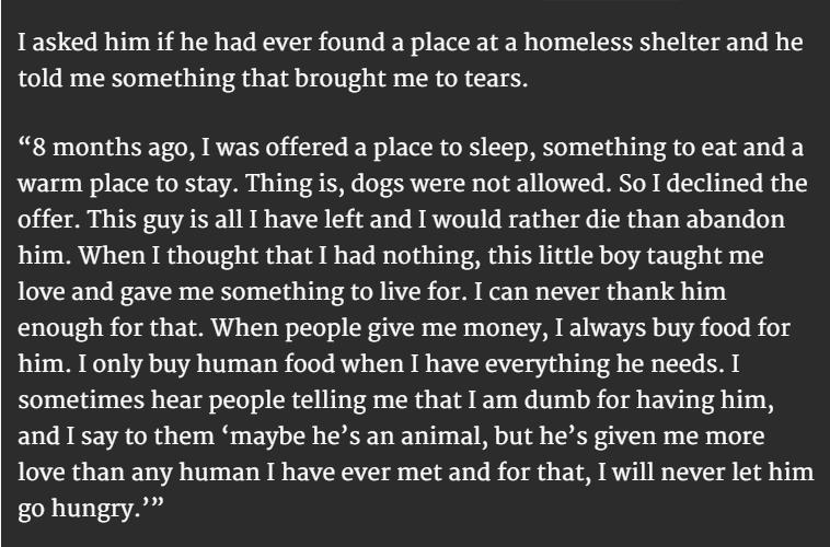 homeless man and dog 3