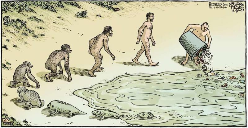 human evolution 1