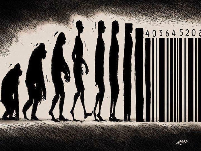 human evolution 4