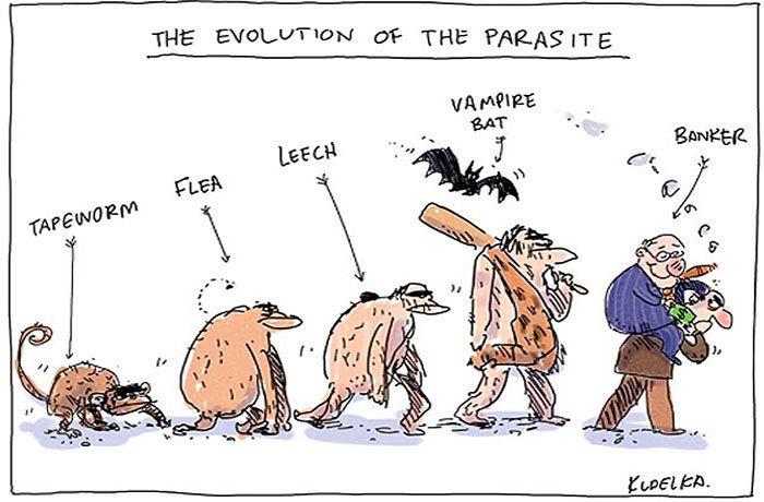 human evolution 5