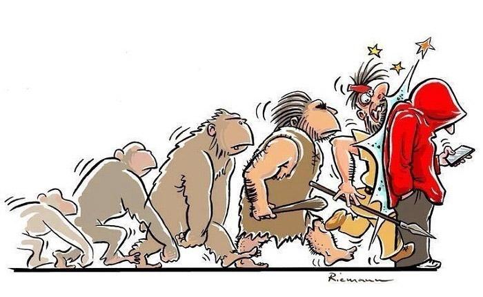 human evolution 6