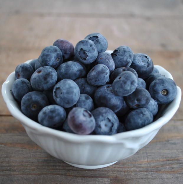 blueberries prevent dementia