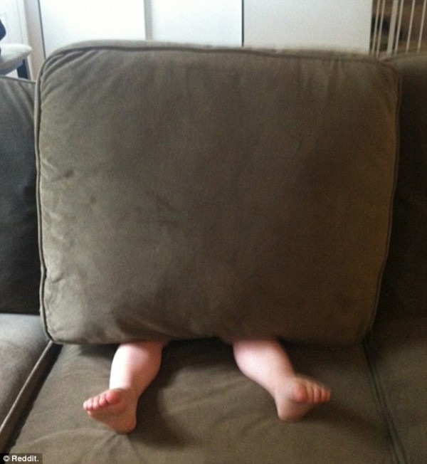 hilarious hide and seek