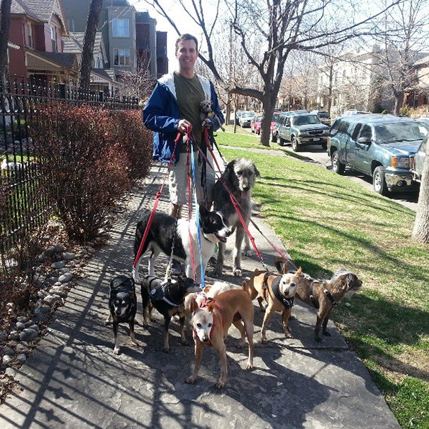 man adopts dogs