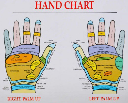 Reflexology Guide To Common Ailments