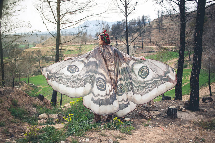 butterfly scarves
