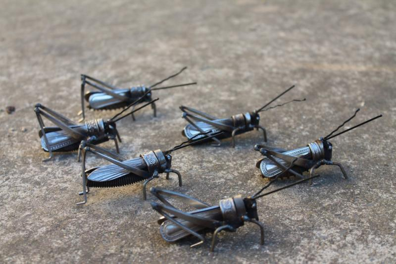 welded insects