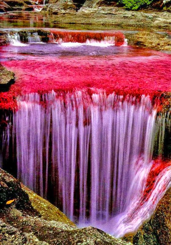 crystals river
