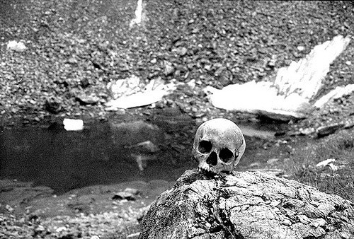 skeleton in lake