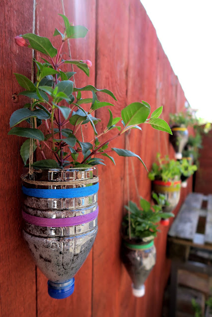 turn your fence into a garden