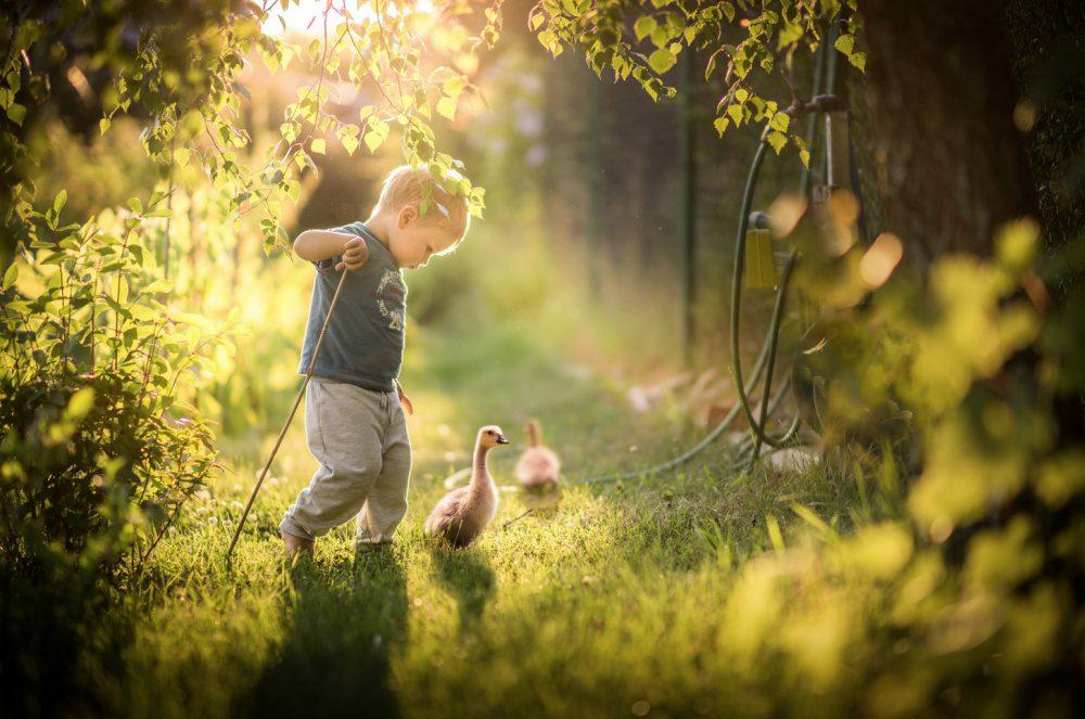 captivating shots photography 5