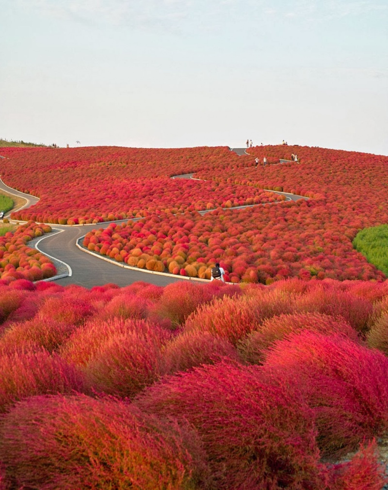 colorful places created by Mother Nature 3