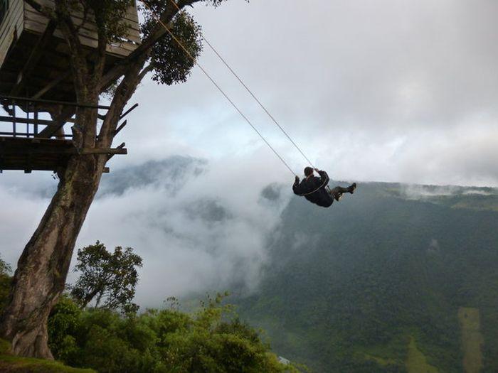 tree swing 9