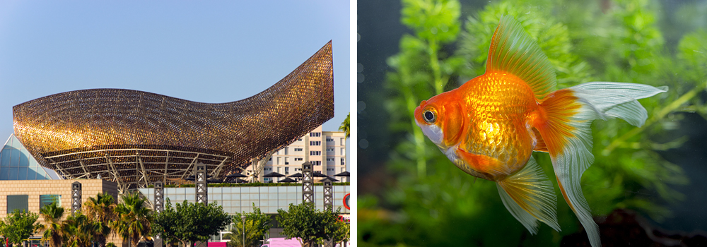 architectural masterpieces inspired by nature