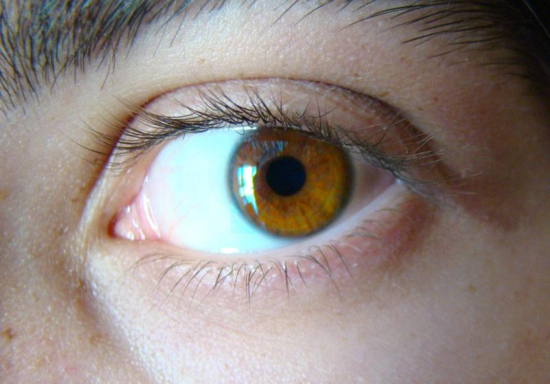 the origin of blue eyes 4