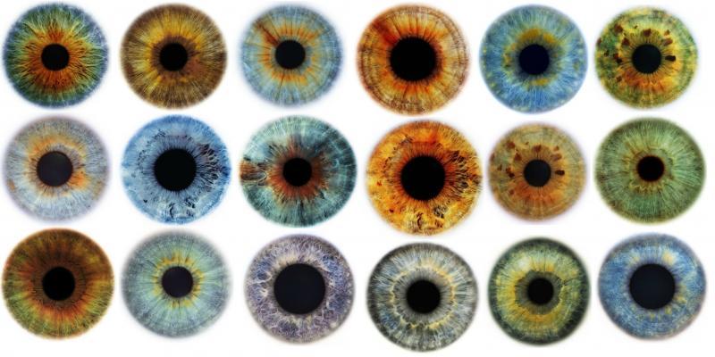 the origin of blue eyes 5