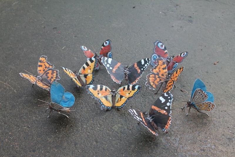 welded bugs 3