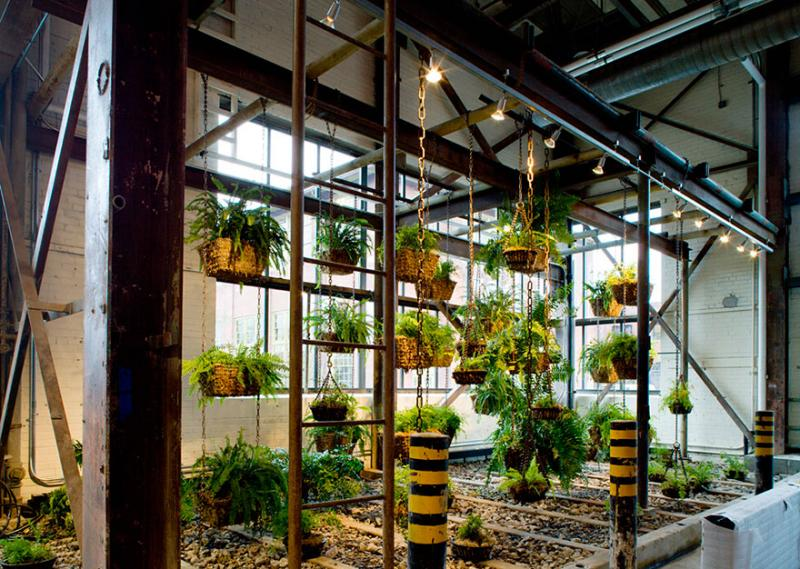 world's coolest offices 20