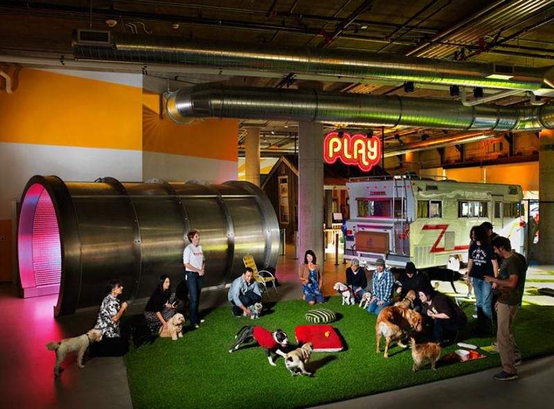world's coolest offices 26