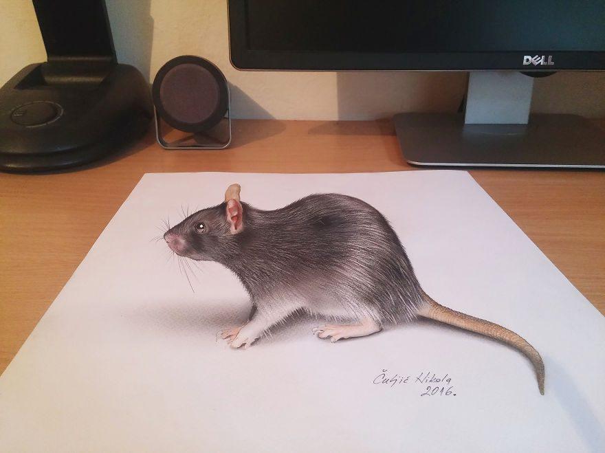 3D drawings10