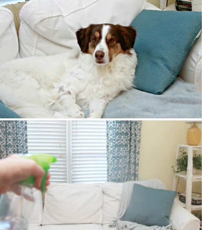 Cleaning tricks20