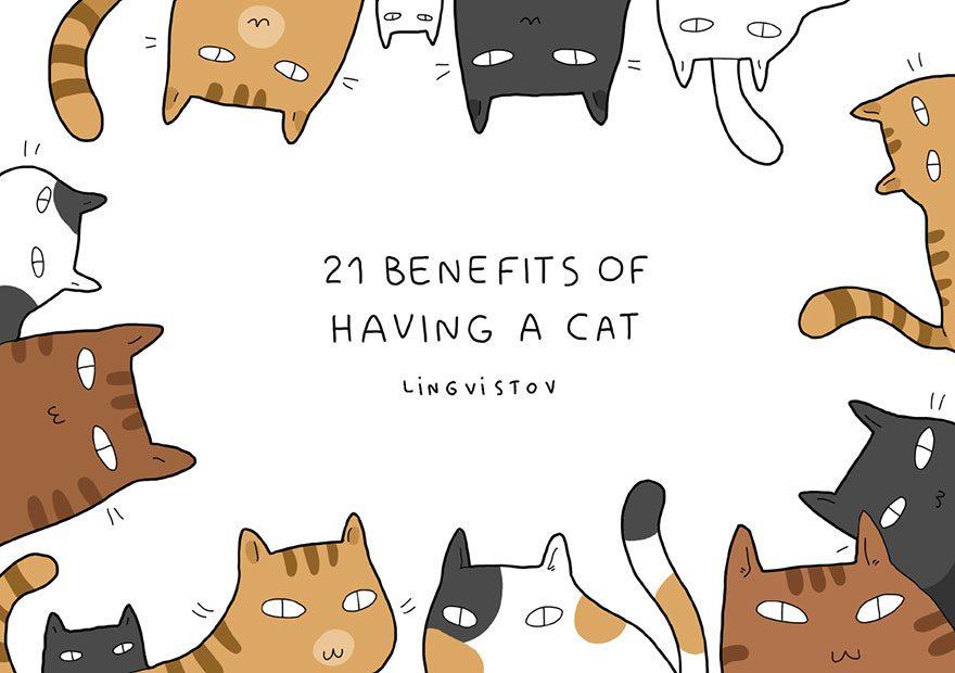 benefits of having cat 1