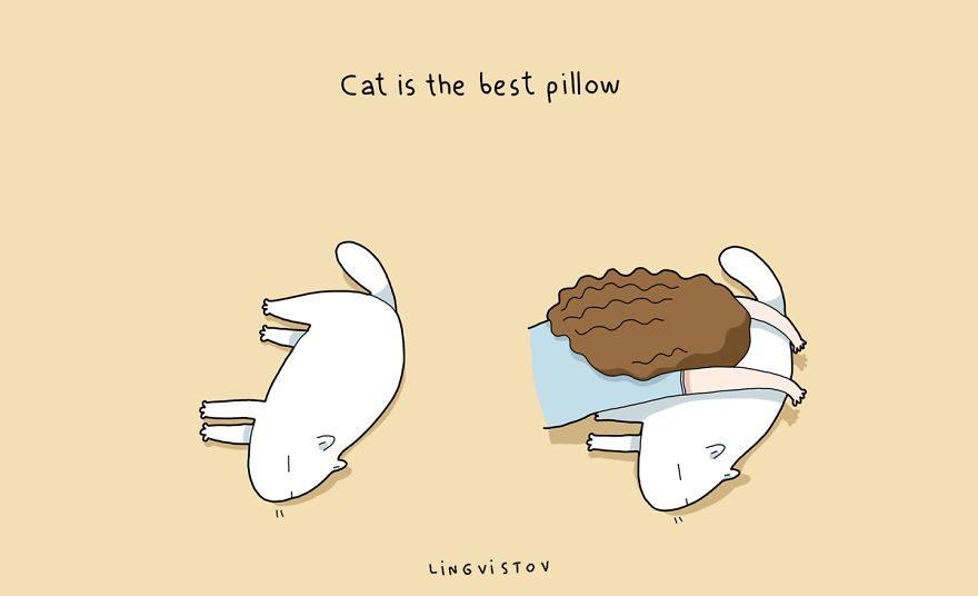 benefits of having cat 10