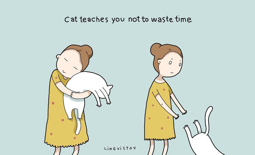 benefits of having cat 12