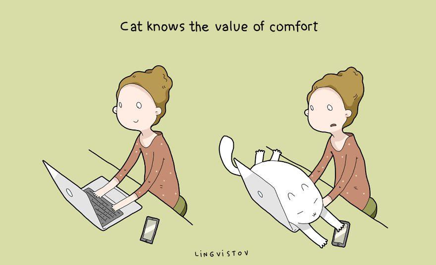 benefits of having cat 13