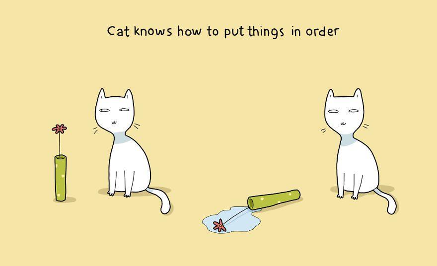 benefits of having cat 14