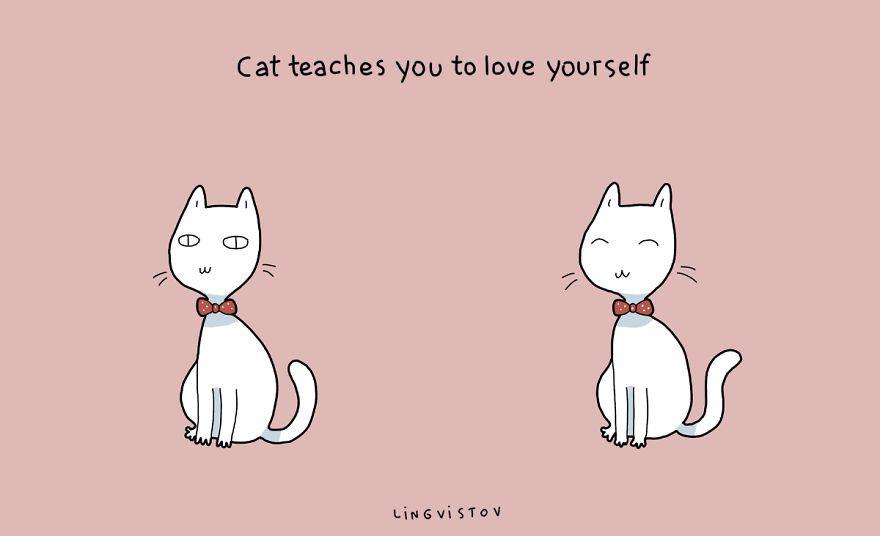 benefits of having cat 17