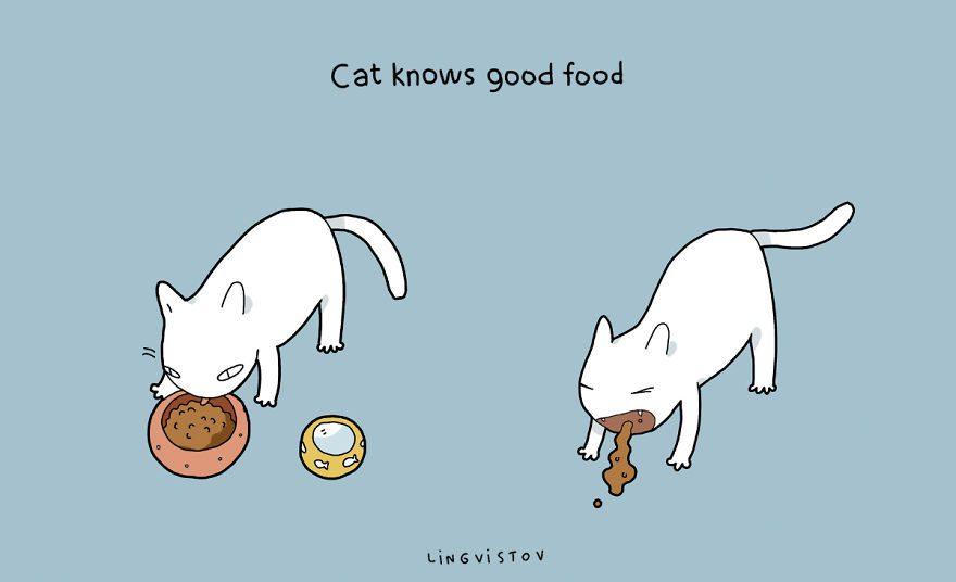 benefits of having cat 19
