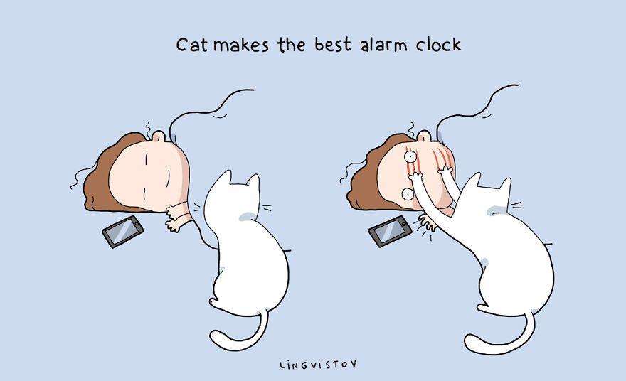 benefits of having cat 4