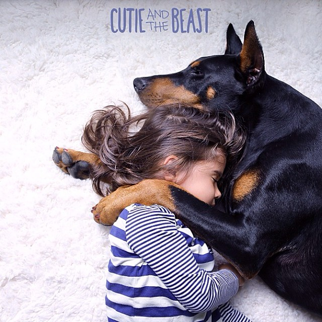 cutie and the beast 1