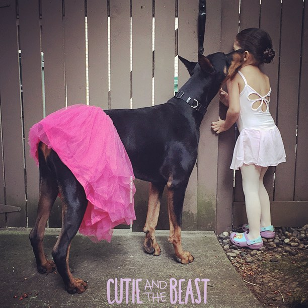 cutie and the beast 2