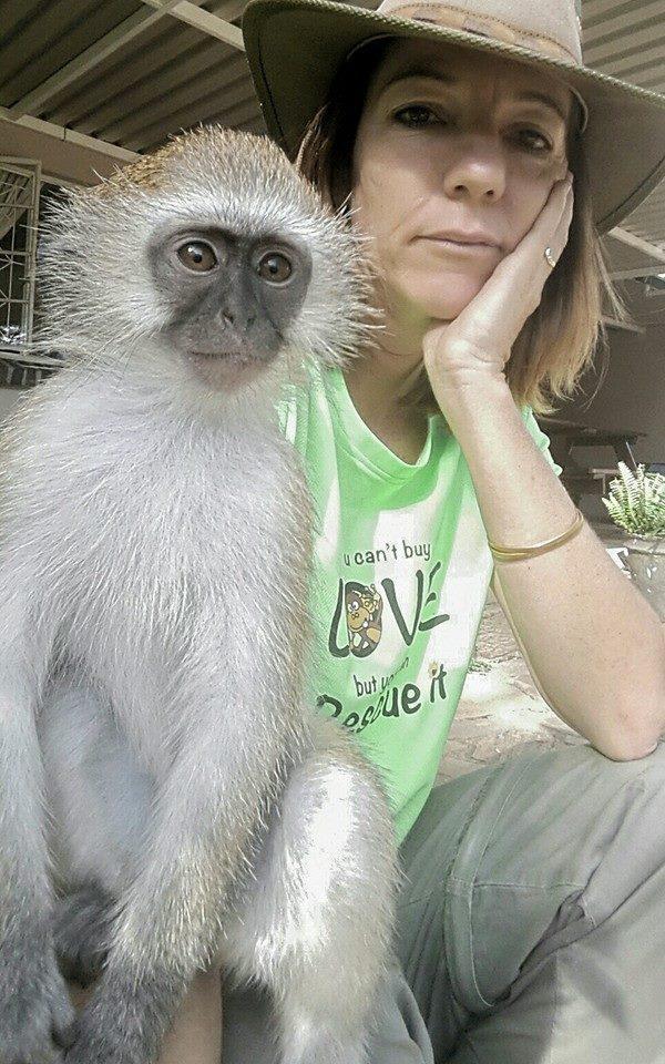 rescued monkey3