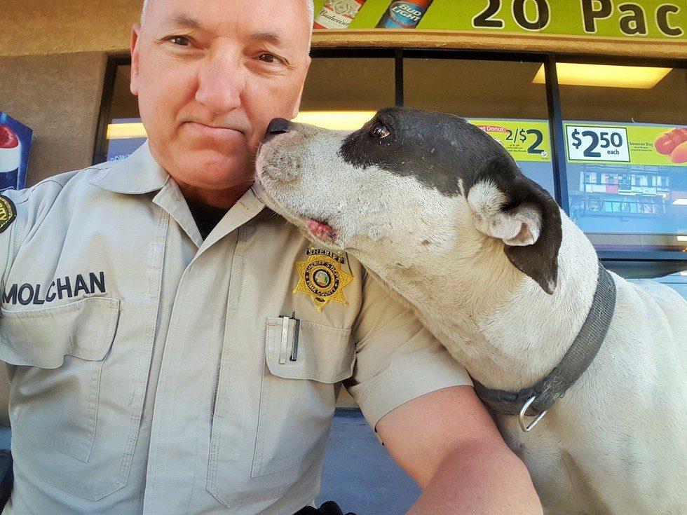 officer-and-dog-selfie3