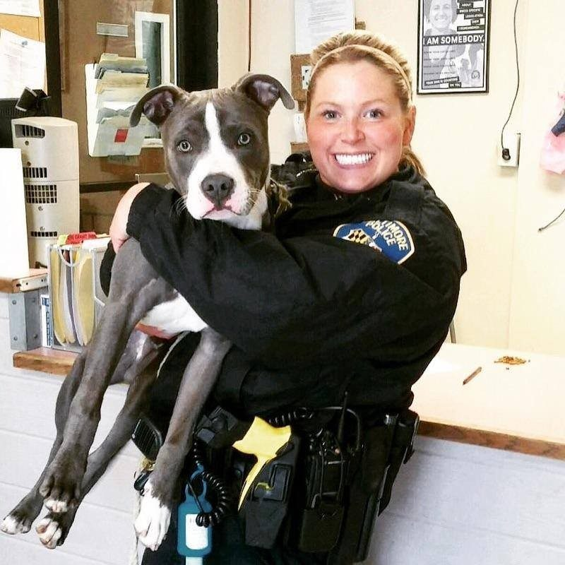 police-officer-rescues-a-dog1