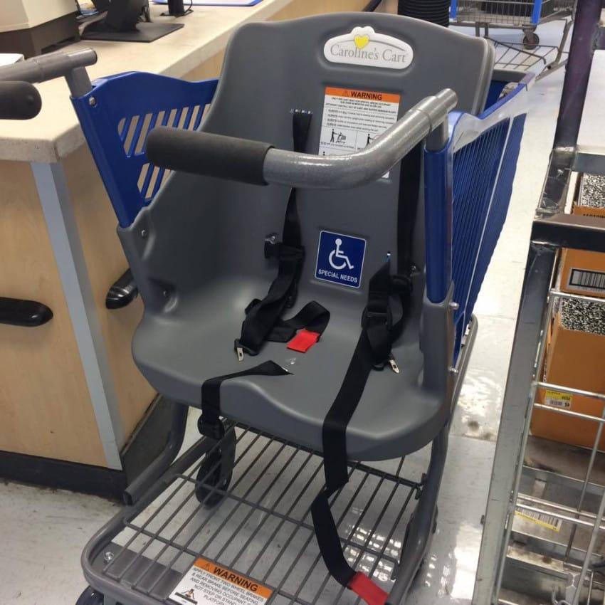 caroline-cart-for-seniors2