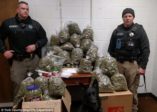marijuana for christmas