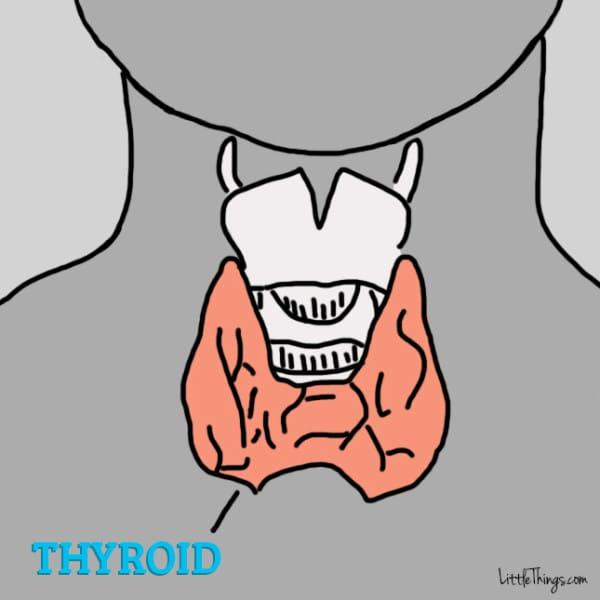 thyroid problem symptoms
