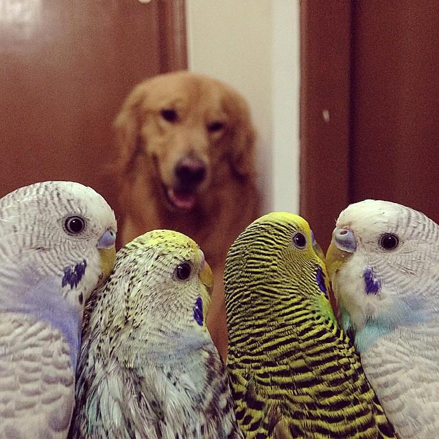 unusual friendship
